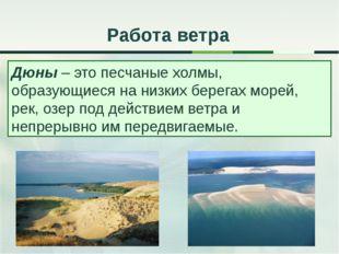 Работа ветра Дюны – это песчаные холмы, образующиеся на низких берегах морей,