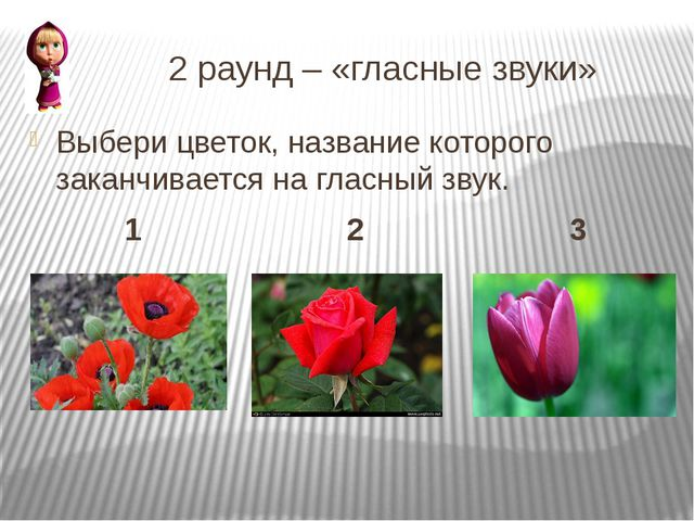 2 раунд – «гласные звуки» Выбери цветок, название которого заканчивается на...