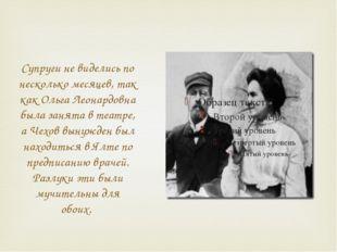 Супруги не виделись по несколько месяцев, так как Ольга Леонардовна была заня