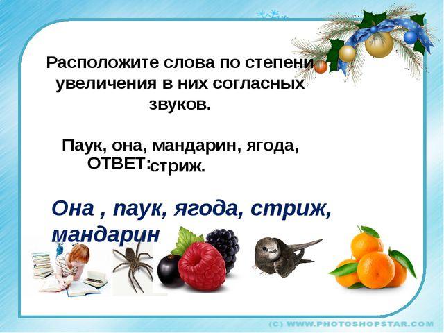 Она , паук, ягода, стриж, мандарин Расположите слова по степени увеличения в...