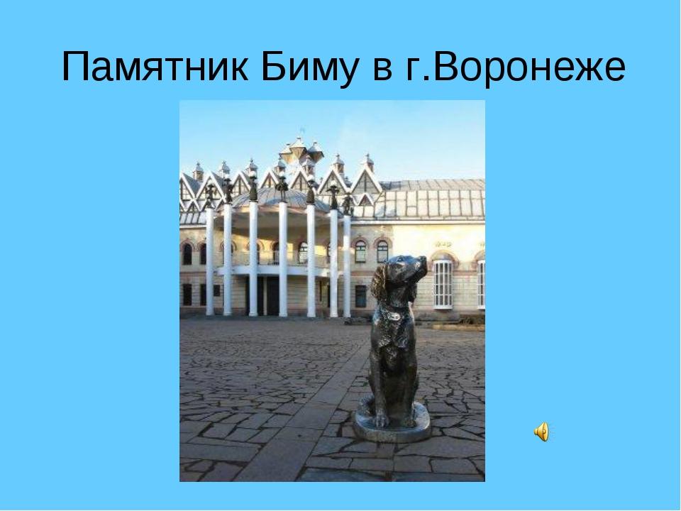 Памятник Биму в г.Воронеже