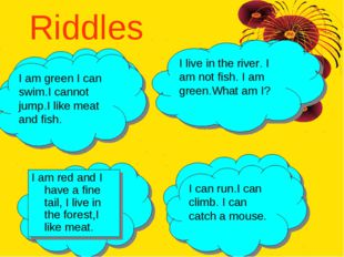 Riddles I am red and I have a fine tail, I live in the forest,I like meat. (a