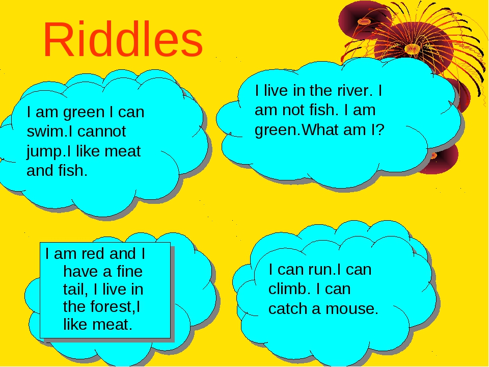 Riddles I am red and I have a fine tail, I live in the forest,I like meat. (a...