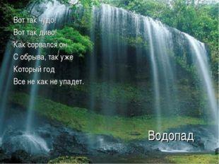 Водопад Вот так чудо! Вот так диво! Как сорвался он С обрыва, так уже Который