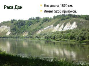 Река Дон Его длина 1870 км. Имеет 5255 притоков.