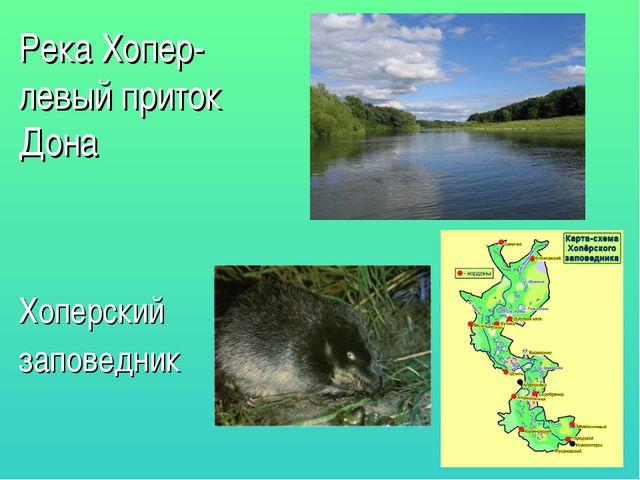 Река Хопер-левый приток Дона Хоперский заповедник