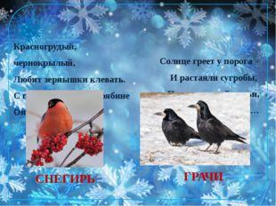 СНЕГИРЬ Красногрудый, чернокрылый, Любит зернышки клевать. С первым снегом на
