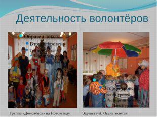 Деятельность волонтёров Группа «Домовёнок» на Новом году Здравствуй, Осень зо