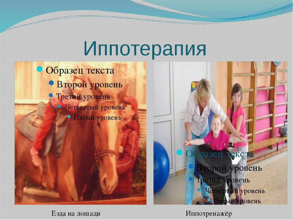 Иппотерапия Иппотренажёр Езда на лошади
