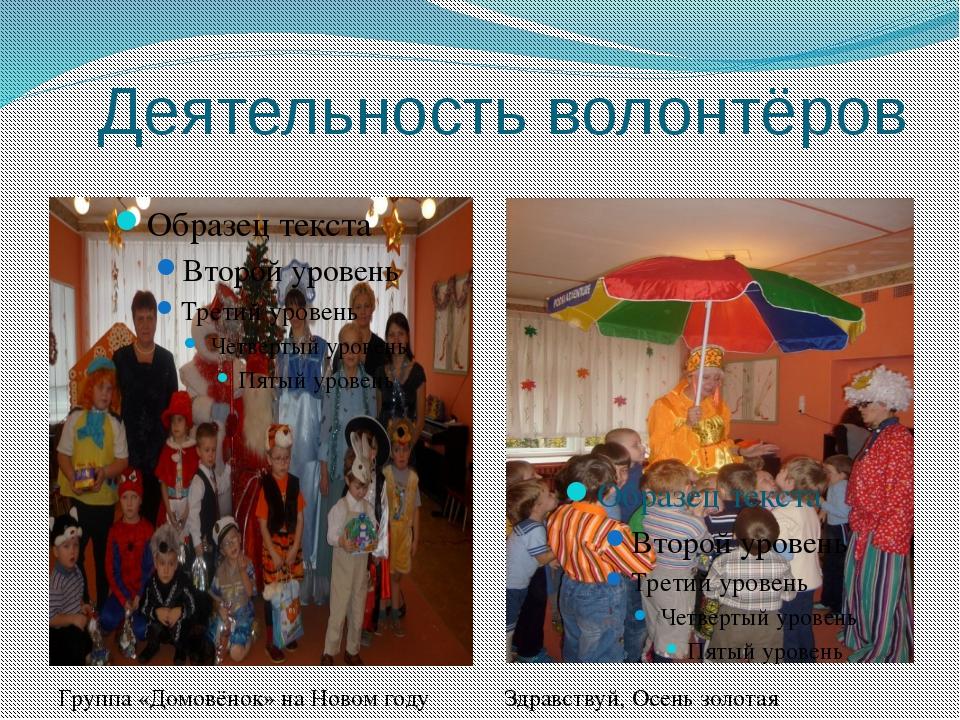 Деятельность волонтёров Группа «Домовёнок» на Новом году Здравствуй, Осень зо...