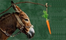 http://www.yourenergymedicine.com/energy-medicine-blog/wp-content/uploads/2014/11/donkey-and-carrot.jpg