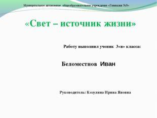 Муниципальное автономное общеобразовательное учреждение «Гимназия №9» «Свет –
