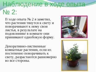 Наблюдение в ходе опыта № 2: В ходе опыта № 2 я заметил, что растения тянутся