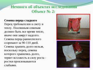 Немного об объектах исследования Объект № 2: Семена перца сладкого Перец треб