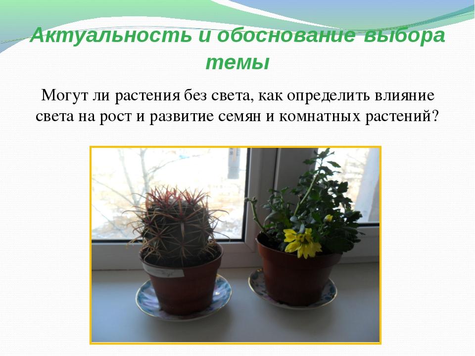 Актуальность и обоснование выбора темы Могут ли растения без света, как опред...