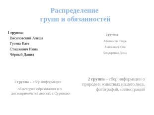 Распределение групп и обязанностей 1 группа: Василовский Алёша Гусева Катя