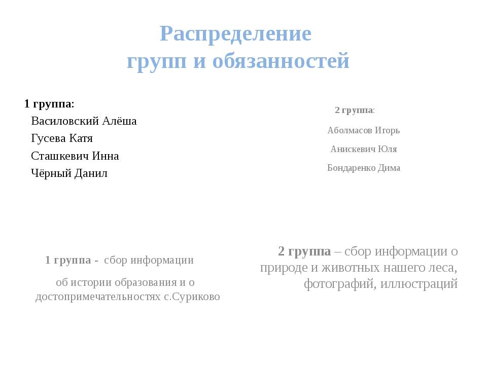 Распределение групп и обязанностей 1 группа: Василовский Алёша Гусева Катя...