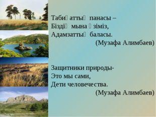 Табиғаттың панасы – Біздің мына өзіміз, Адамзаттың баласы. (Музафа Алимбаев)