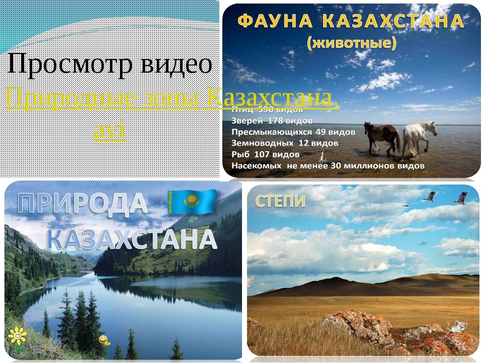 Просмотр видео Природные зоны Казахстана.avi