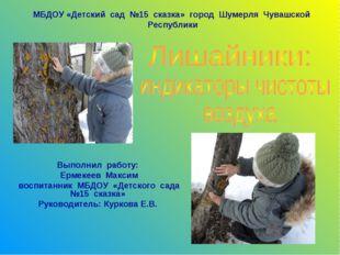 Выполнил работу: Ермекеев Максим воспитанник МБДОУ «Детского сада №15 сказка»