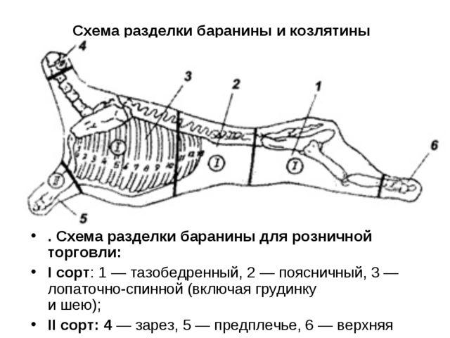 Схема разделки баранины и козлятины . Схема разделки баранины для розничной т...