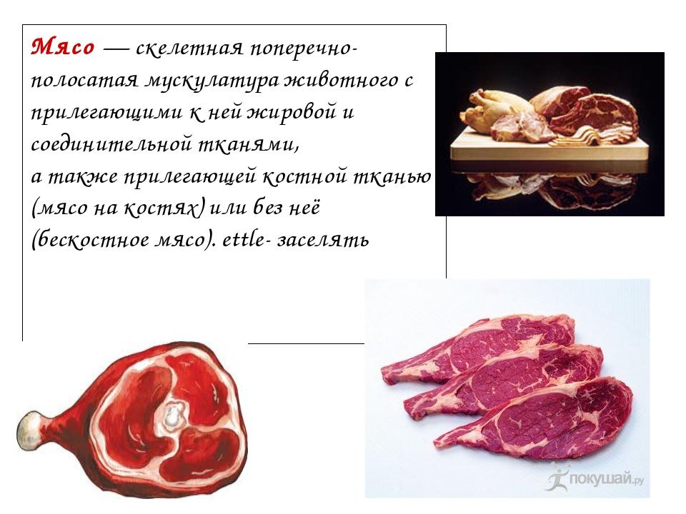 Мясо — скелетная поперечно-полосатая мускулатура животного с прилегающими к н...