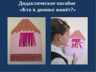 Дидактическое пособие «Кто в домике живёт?»