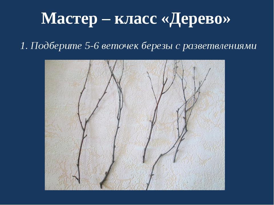 Мастер – класс «Дерево» 1. Подберите 5-6 веточек березы с разветвлениями