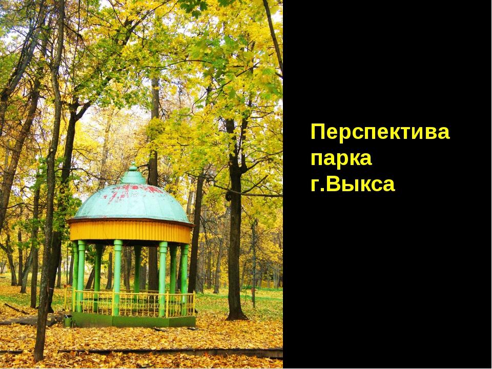 Перспектива парка г.Выкса
