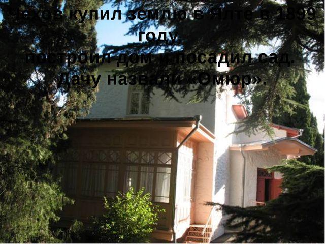 Чехов купил землю в Ялте в 1899 году, построил дом и посадил сад. Дачу назвал...
