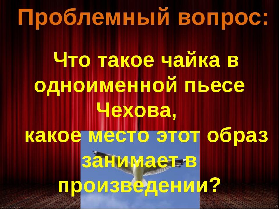 Проблемный вопрос: Что такое чайка в одноименной пьесе Чехова, какое место эт...