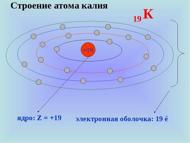 Строение атома калия +19