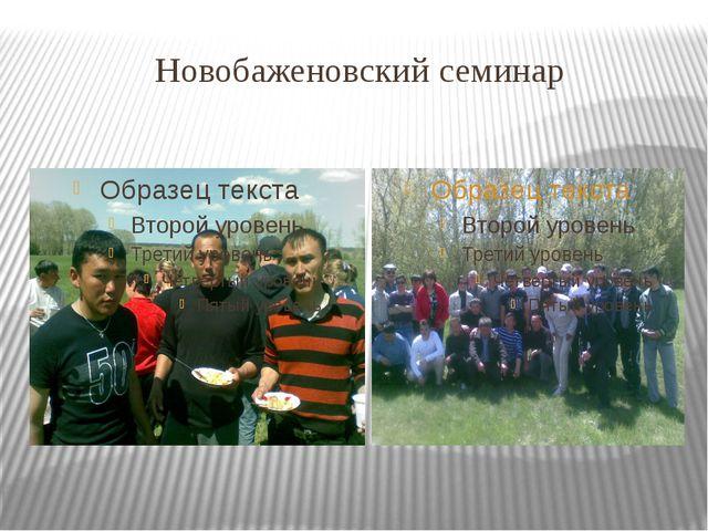 Новобаженовский семинар