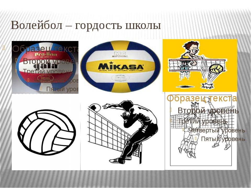 Волейбол – гордость школы