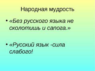 Народная мудрость «Без русского языка не сколотишь и сапога.» «Русский язык -
