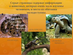 Серые страницы содержат информацию о животных, которые очень мало изучены чел