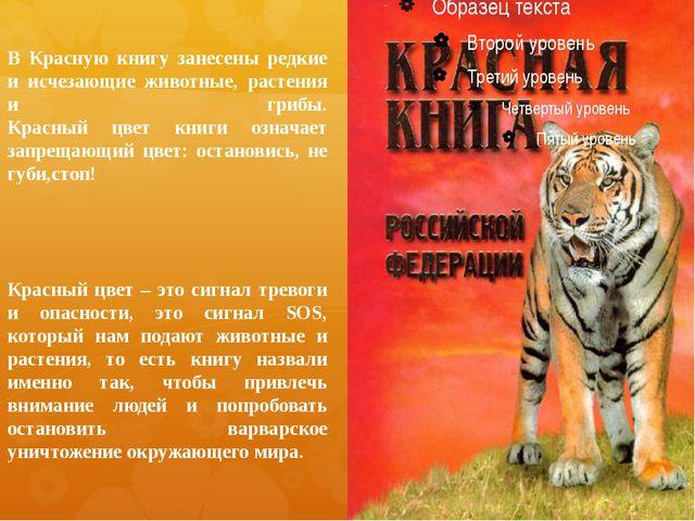 В Красную книгу занесены редкие и исчезающие животные, растения и грибы. Крас...
