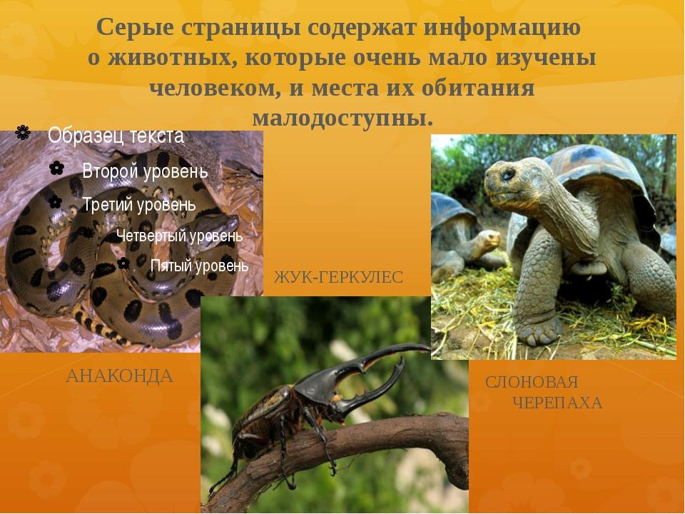 Серые страницы содержат информацию о животных, которые очень мало изучены чел...