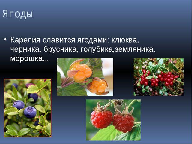Ягоды Карелия славится ягодами: клюква, черника, брусника, голубика,земляника...