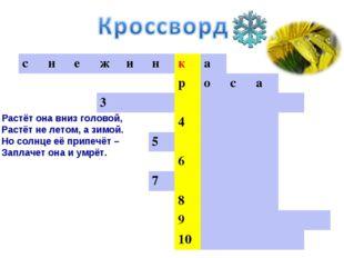 * 3. Растёт она вниз головой, Растёт не летом, а зимой. Но солнце её припечёт