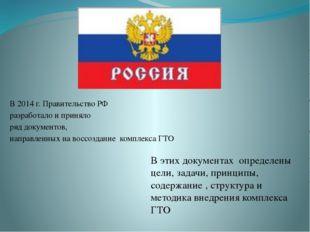 В 2014 г. Правительство РФ разработало и приняло ряд документов, направленны