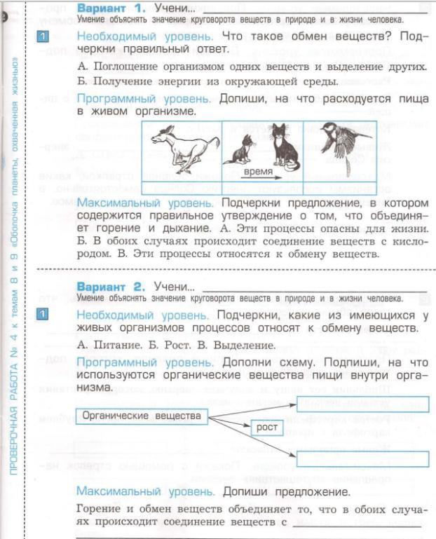 hello_html_m5c7386b2.jpg