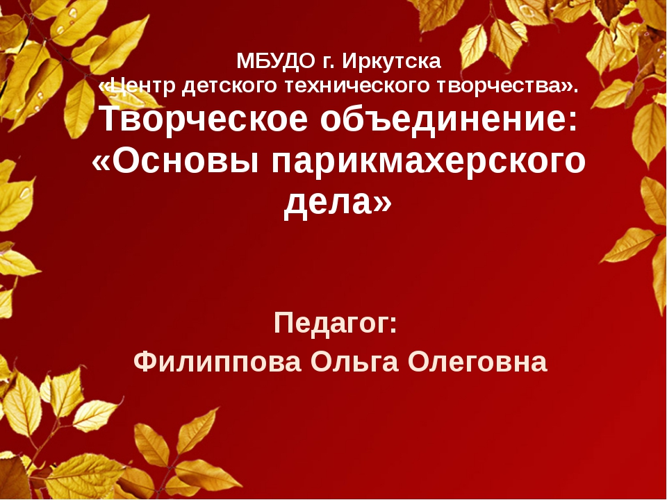 МБУДО г. Иркутска «Центр детского технического творчества». Творческое объеди...