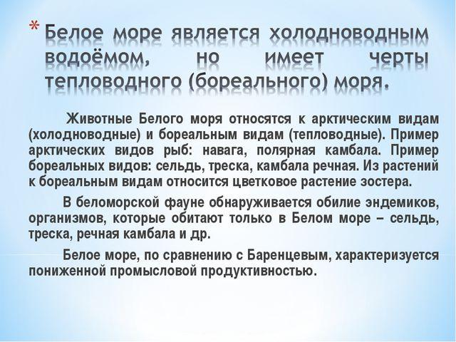 Животные Белого моря относятся к арктическим видам (холодноводные) и бореа...