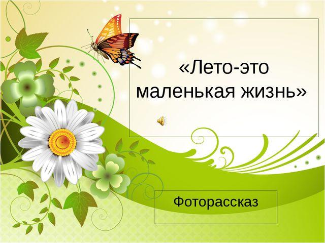 «Лето-это маленькая жизнь» Фоторассказ