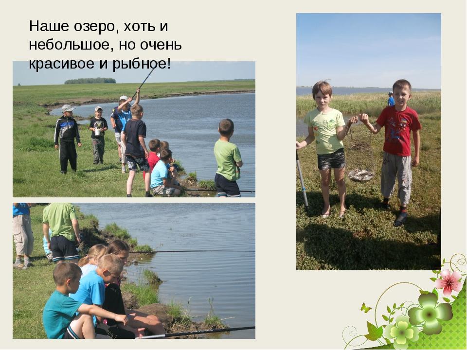 Наше озеро, хоть и небольшое, но очень красивое и рыбное!