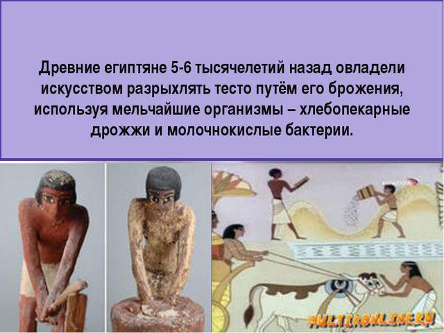 Древние египтяне 5-6 тысячелетий назад овладели искусством разрыхлять тесто п...