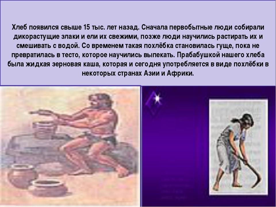 Хлеб появился свыше 15 тыс. лет назад. Сначала первобытные люди собирали дико...