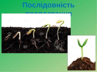 Послідовність проростання