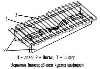http://www.dom-dobra.su/_up/images/2013/1/10/16/1357822086.jpg